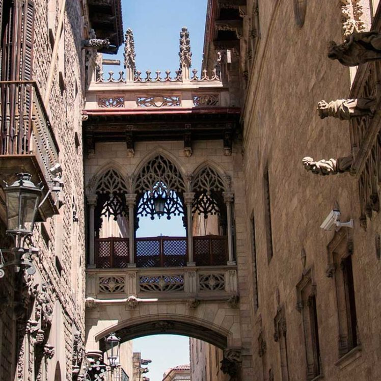Barcelona Private Tour by car/minivan